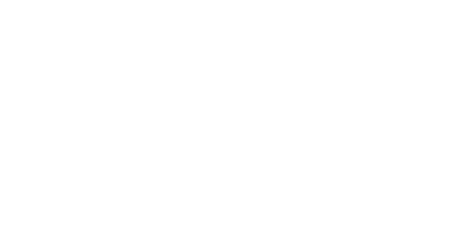 HKU_Business_School_Logo_White